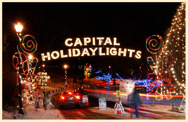patty tobin lights in the park albany