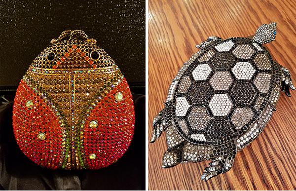 beetle-turtle-compweb